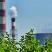 Skutki smogu – wpływ smogu na zdrowie